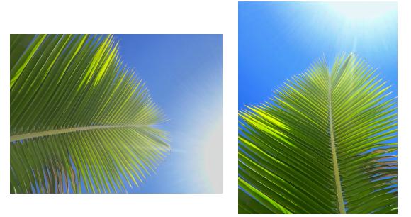 sabsaasas - Como editar fotos sem usar aplicativos
