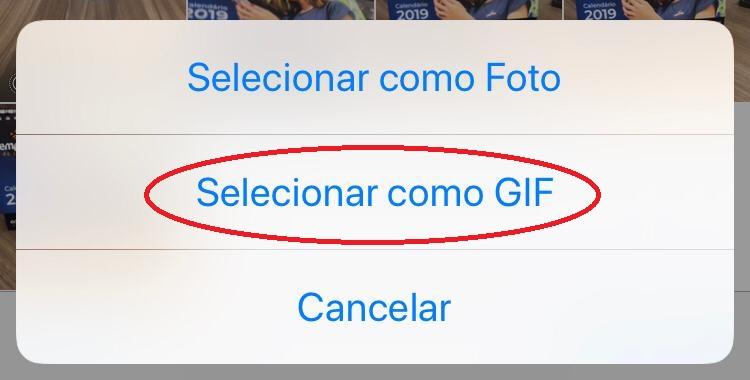 gif iphone - Como fazer um gif no celular